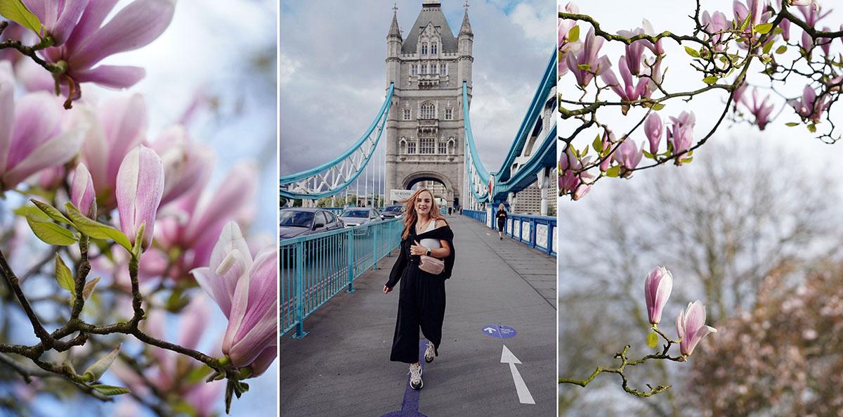 cherry blossom spring london photoshoot